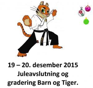 2015 forside juleseminar barn og tiger